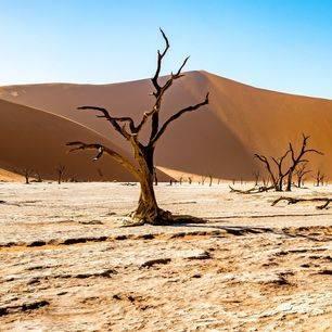 Namibie-Sossusvlei-zandberg_3_492610