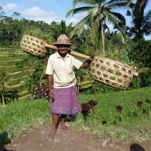 Indonesie-bali-man-draagstok