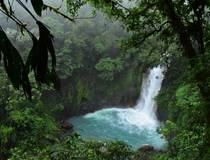 Tenorio National Park tour met gids