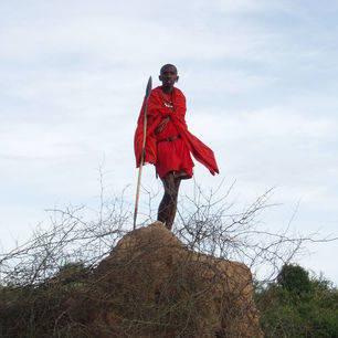 Kenia-Masai-krijger_1_373831