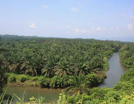 Sumatra-Bukit-Lawang-Uitzicht_1_405825