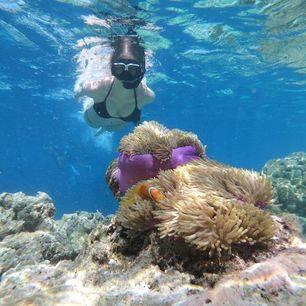 indonesie-sulawesi-bira-onderwaterwereld(2)