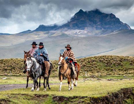 Stap op een paard in Cotopaxi