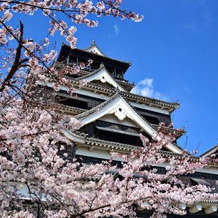 Japan-Fukuoka-Kasteel