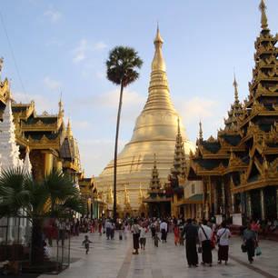 Myanmar-Yangon-Shwedagon pagode4(8)