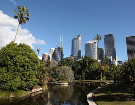 Australie-Sydney-botanische-tuin-2_1_573062