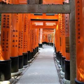 Torii Gates, Japan