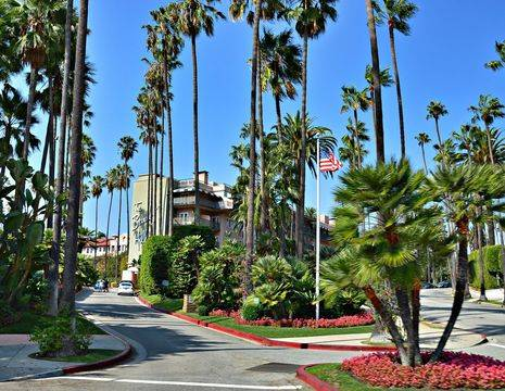 Los-Angeles-Beverly-Hills1