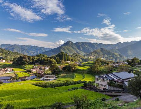 Groene-en-wijde-omgeving-van-Takachiho(12)