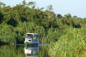 Kalimantan-Tanjung Puting NP-Klotok3