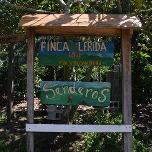 Panama-Boquete-trail-Finca-Lerida-6_1_360566