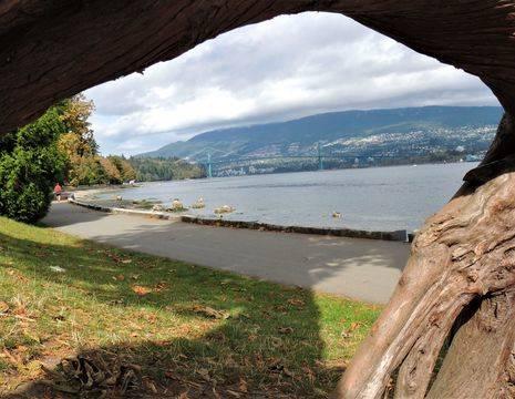 Canada-Vancouver-Stanley-Park-Boom