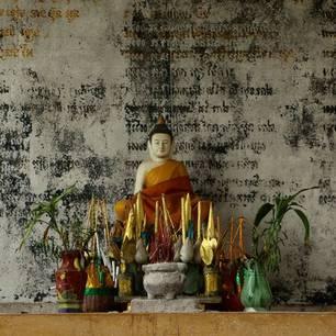 Cambodja-Kratie-offers(8)