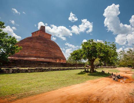 Sri-Lanka-Anuradhapura10_1