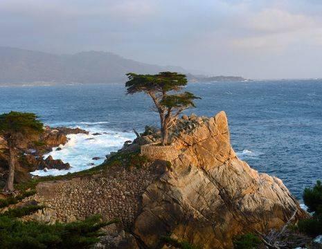 Verenigde-Staten-Monterey-cipres-kliffen_1_549205