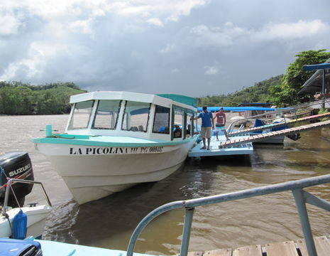Corcovado-NP-Boottocht(13)
