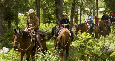 Amerika-Rockies-Ucross-Paardrijden