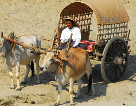 Myanamar-Mandalay- Mingun taxi(8)