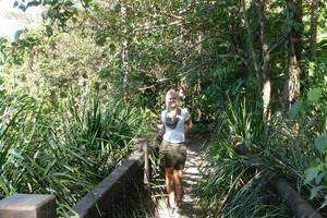 Daintree Rainforest & Cape Tribulation dagtour