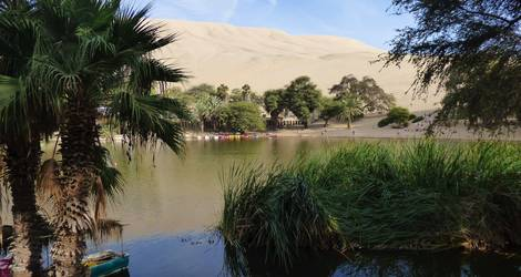 Oase-in-Huacachina
