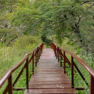Chili-Coyhaique-park_1_430061