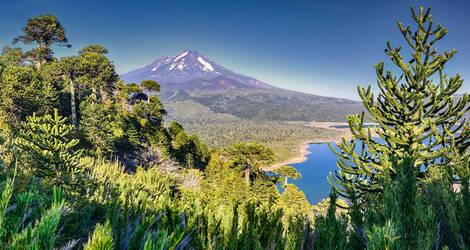 Chili-Conguillio-National-Park-Llaima-Vulkaan-1