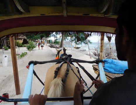 indonesie-lombok-gili-meno-cimodo_1_462715
