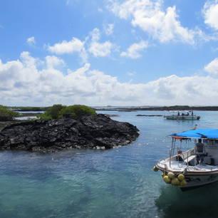 Spring van de boot in het heldere water bij Isabela, Galapagos