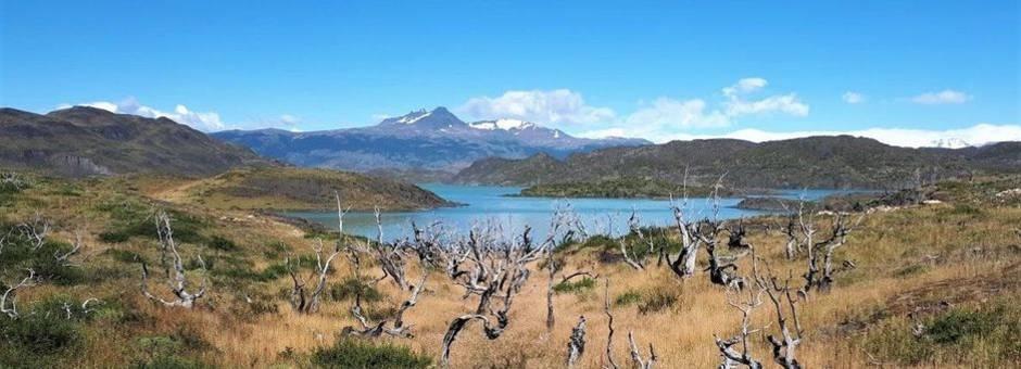 Argentinie-Torres-del-Paine-Natuur_1_429035