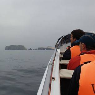 Peru-Islas-Ballestas-Varen_1_414444