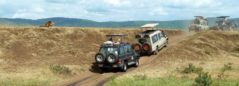 Tanzania-Ngorongoro-Krater-Jeeps