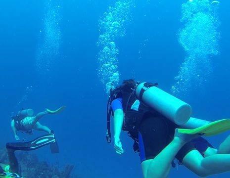 Colombia-San-Andres-duiken1_1_484675