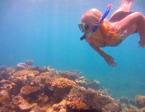 Australie-Great-Barrier-Reef-Snorkelen-Lisanne(8)