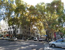 Citytour Mendoza