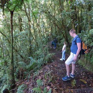 Panama-Boquete-Jungle_1_367453