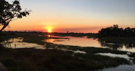 De zonsondergang in Okavango Delta