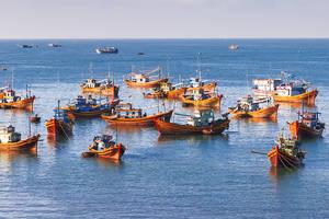 Bouwstenen Zuid-Vietnam