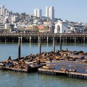 Amerika-San-Francisco-Fishermans-Wharf