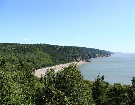 Canada-Fundy-National-Park-6