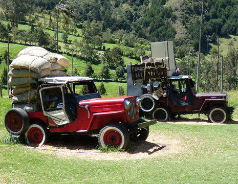Colombia-Valle-de-Cocora-willy_1_484366