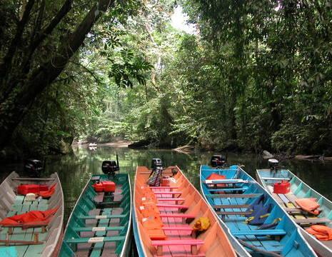 Maleisië-MaleisischBorneo-Sarawak-MuluNP-gekleurde bootjes(8)