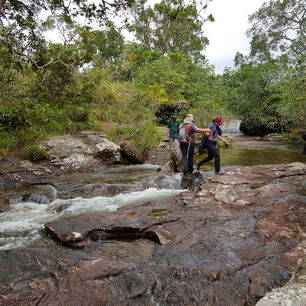 Colombia-Cano-Cristales-hiken_1_481573