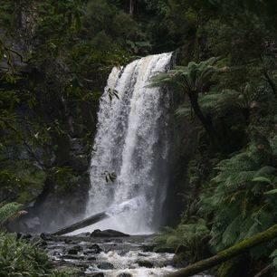 Australie-Great-Ocean-Road-Otway-waterval