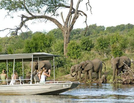 U maakt een spectaculaire bootcruise en spot olifanten, Chobe Nationaal Park, Namibie