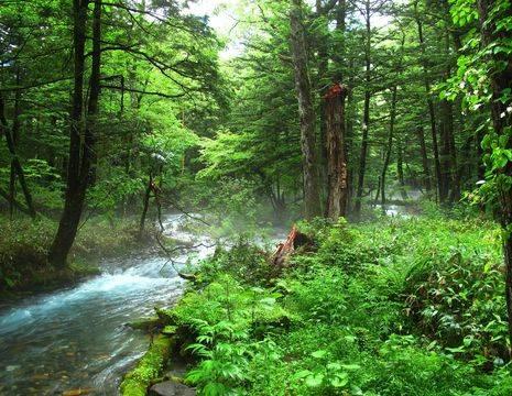 Japan-Kamikochi-Baden