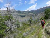 Trekking Cerro Castillo National Park