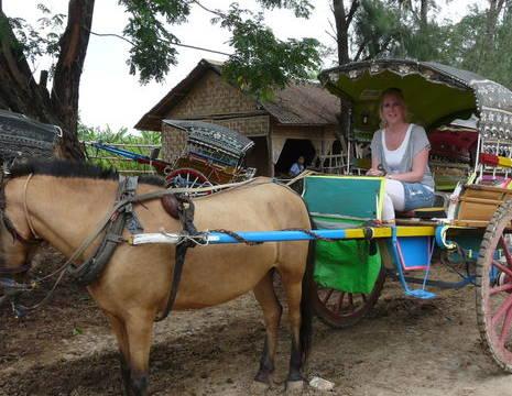 Myanmar-Mandalay-Inwa(8)