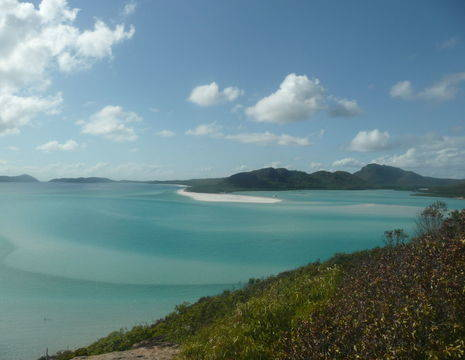 Australie-Whitsundays-whitehaven-beach_1_559406