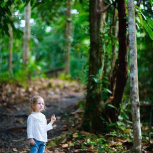 Maleisie-TamanNegara-kleuterinbos