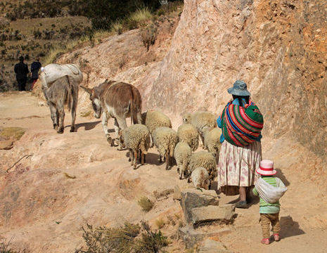 Lokale-bevolking-op-Isla-del-Sol-Bolivia